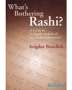 WHAT'S BOTHERING RASHI 5  ( DEVARIM )