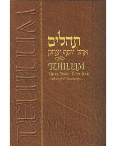 TEHILLIM - PSALMS HEBREW ENGLISH LARGE 4X6 PAPER BACK