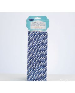 CHANUKAH PAPER STRAWS 12PC