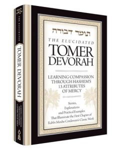 ELUCIDATED TOMER DEVORAH
