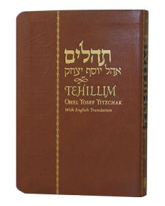 TEHILLIM - PSALMS HEBREW ENGLISH LARGE 4X6 FLEXI COVER