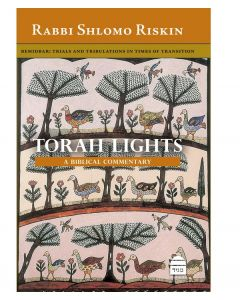 Torah Lights: Bemidbar- By Rabbi Shlomo Riskin